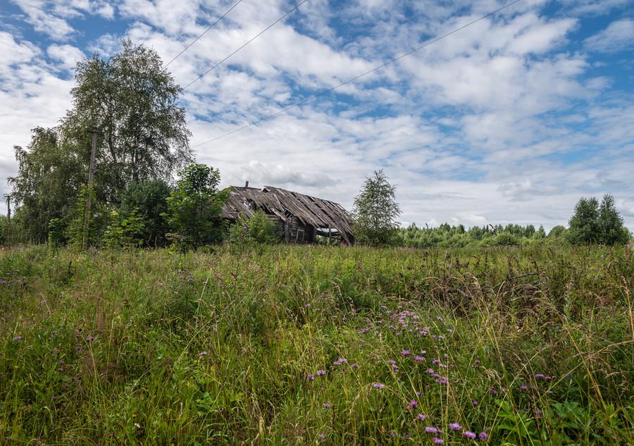 Borschovka_011.jpg