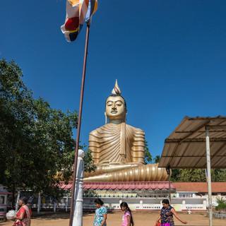 Статуя Будды в монастыре Вевуруканнала  Buddha statue in Wewurukannala monastery