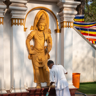 На территории буддистского храма, Анурадхапура  In a Buddhist temple premises, Anuradhapura