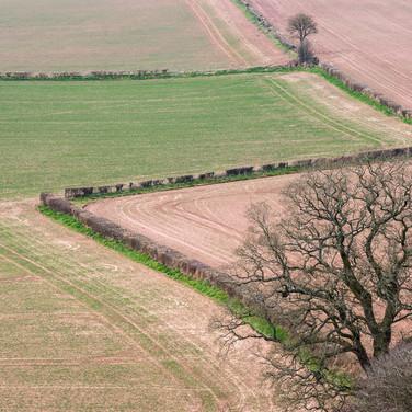 Сельский пейзаж рядом с замком Раглан Rural landscape near Raglan Castle