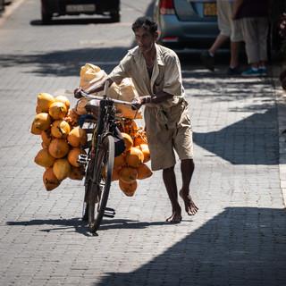 На улицах старого города в Галле. Продавец кокосов  In the streets of Galle's Old Town. Coconut seller