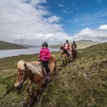 Фарерцы на исландских лошадях на воскресной прогулке Faroese riding Icelandic horses on a Sunday outing