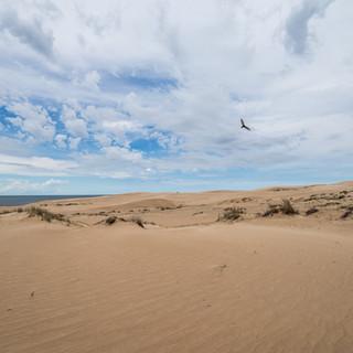 Песок, вода и небо. В дюнах Барра-де-Валисас на берегу Атлантического океана  Sand, water, and sky. Barra de Valizas dunes on Uruguay's Atlantic coast