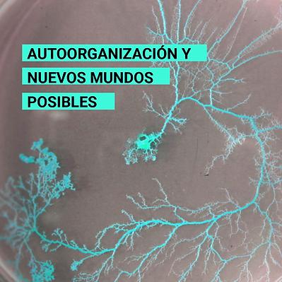 Autoorganización_y_Nuevos_Mundos_Posib