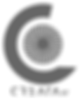 Logos Gris Osc-02.png