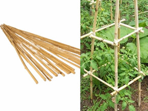 3' Long Bamboo Stakes for Gardening 25-Pk $7.49