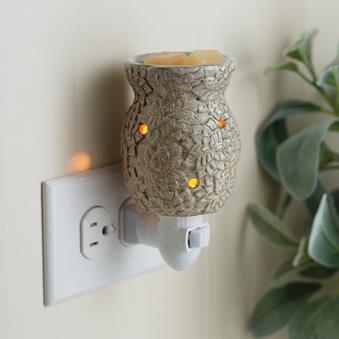 Succulent  - Plug In Burner