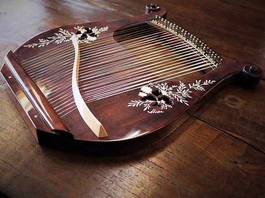 アフロディーテの竪琴 テナー 九州福岡 テナーライアー.jpg