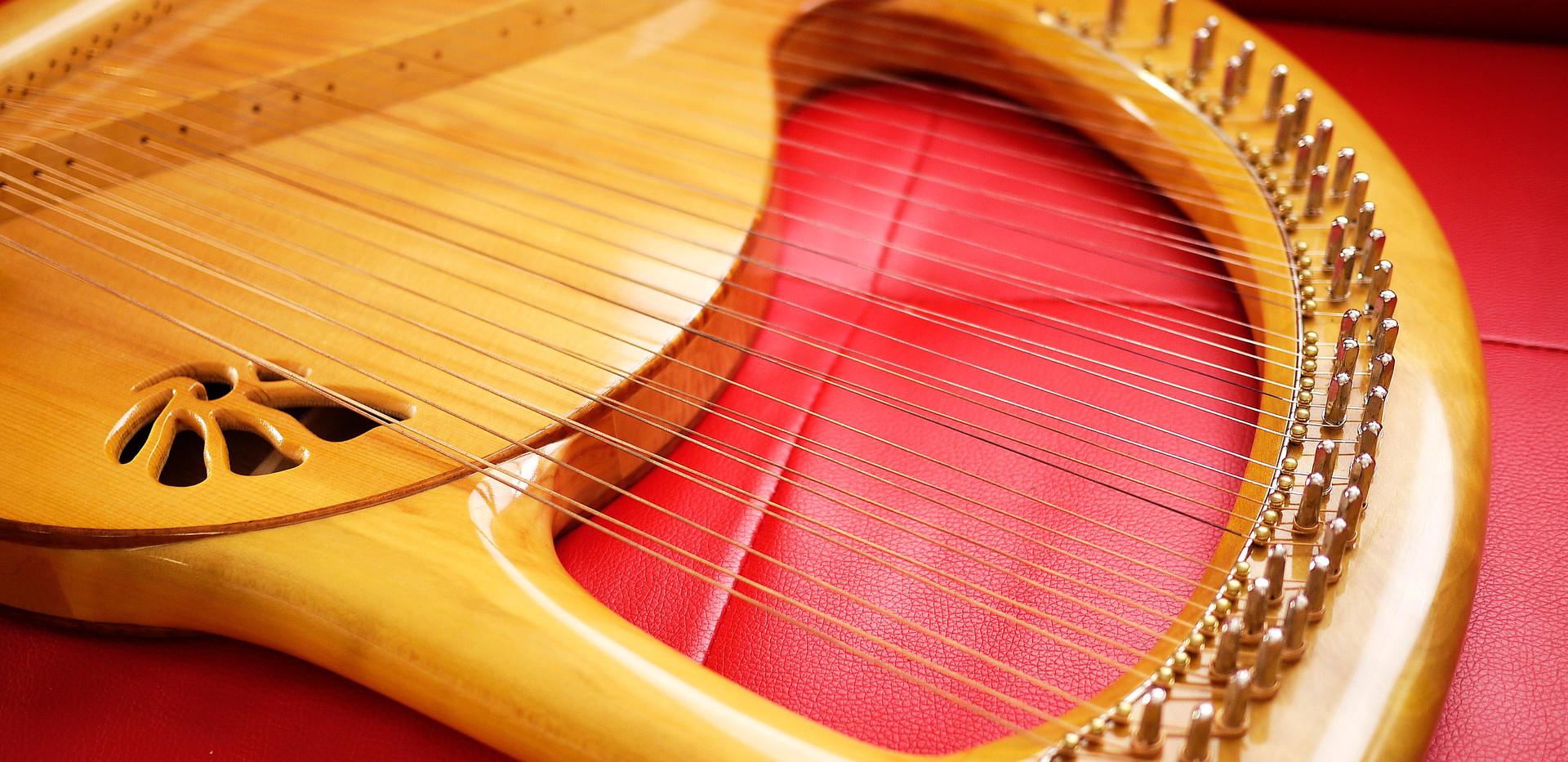 アフロディーテの竪琴リーアノンモデル.JPG
