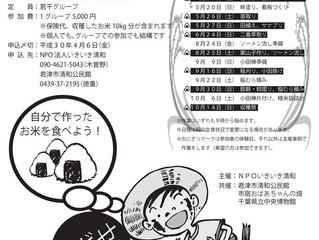 田んぼマイスター お米作り体験!