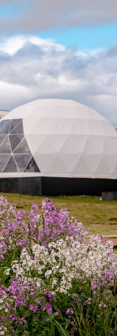 CHILE TOUR PATAGONIA - DOMES & CABINS TA