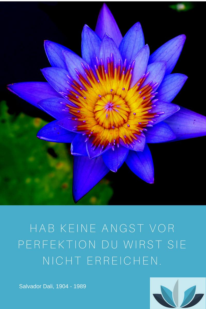 ZITAT Salvador Dali Hab keine Angst vor Perfektion Du wirst sie nicht erreichen. Blaue Lotusblüte