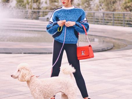 #StreetStyle: French Poodle Attitude
