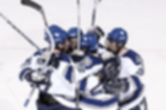 ice-hockey-659838_edited.jpg