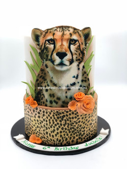 Cheetah Birthday Cake