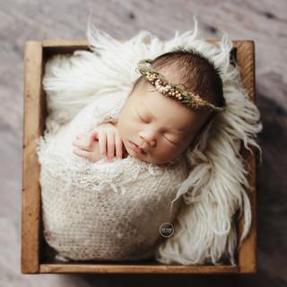 10-newborn-photography-Sydney-2018-Hannah copy.jpg