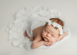 18-newborn-little-feather-photography-sy
