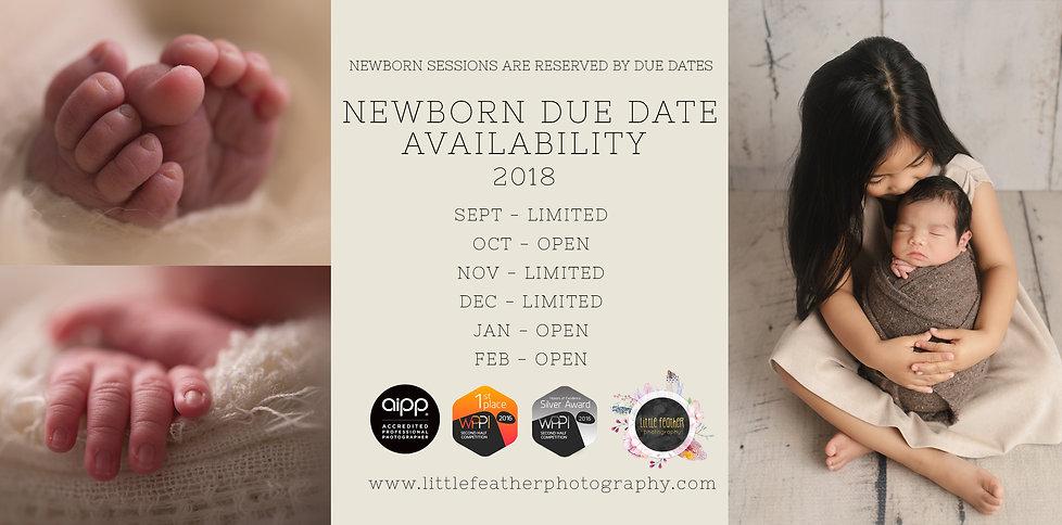 Availability Sept _ Feb 2019.jpg
