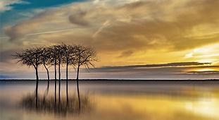 sunset-3313505_1920.jpeg