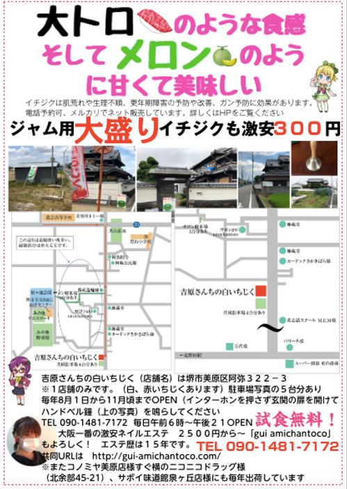 堺市美原区阿弥 吉原さんちの白いちじく.png