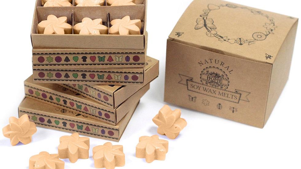 Box of 6  Wax Melts - Midnight Jasmine