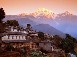 Import direct Inde Tibet Zeny