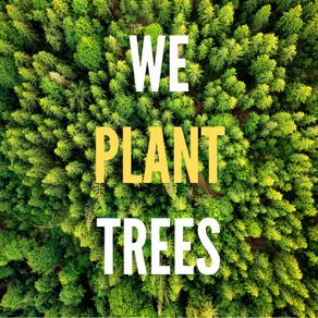 We Plant Trees! 🌳