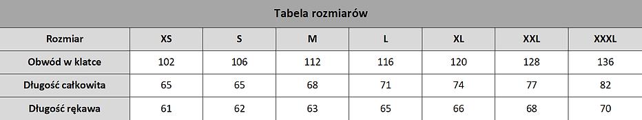 Tabela_final_bez_krawędzi.png