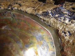 centre edge detail.JPG