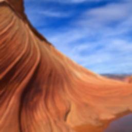 砂漠の砂丘の作物