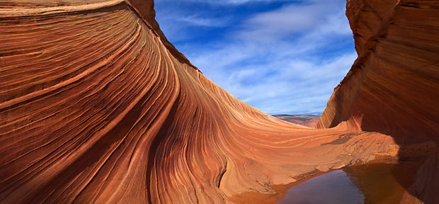 Desert Dune Crop