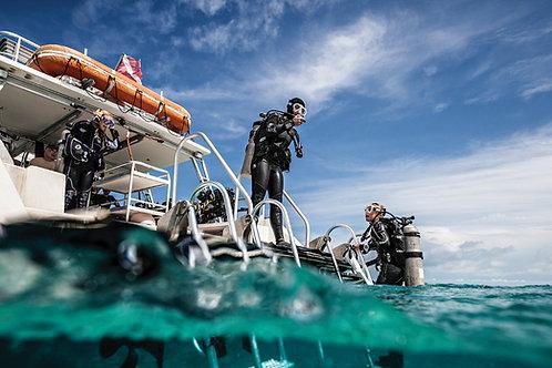 Scuba Diver - Pack Full