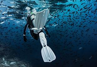 PADI Advanced Diver, SCUBAPRO, matériel de plongée, détendeur, stab, ordinateur, combinaison.Ecole de plongée à Paris. Formation à la carte. Cours et brevets PADI en fosse de 20m, piscine, mer et lac du débutant au moniteur. Vente Livre Manuel PADI