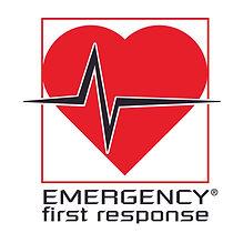 Emergency First Response PADI. Spécialité Secourisme EFR PADI à Paris, Formation à la carte en salle de cours. Cours et brevets PADI Soins Primaires et Secondaires . Vente Livre Manuel PADI