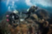 PADI Scuba Diver, SCUBAPRO, scuba diving. isanthea école de plongée à Paris. Formation à la carte. Cours et brevets PADI en fosse de 20m, piscine, mer et lac du débutant au moniteur. Vente Livre Manuel PADI