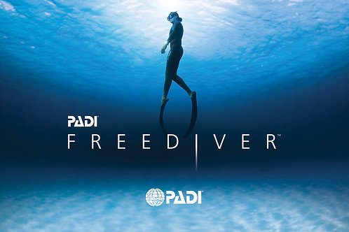 E-learning Freediver (Apnée)