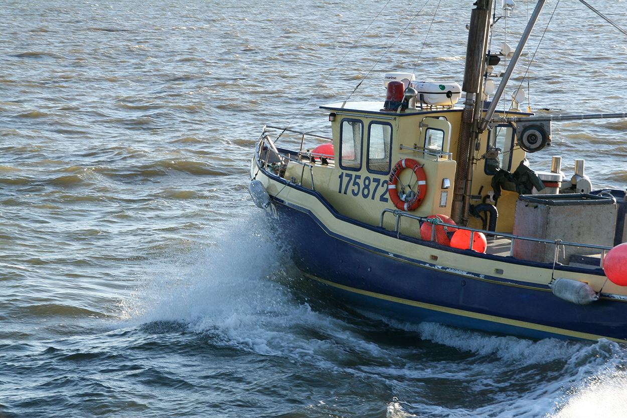 Pêcheur de Rimouski