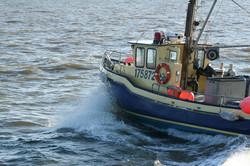 Rimouski Fisherman