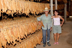 Cigarette Tobacco Barn