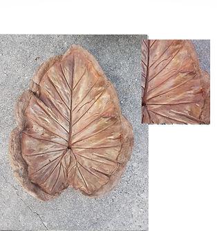 leaf rust.jpg
