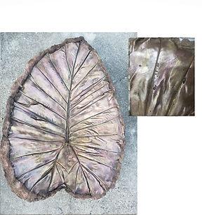 leaf brown.jpg