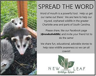 Spread the word.jpg