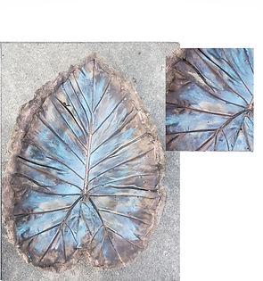 leaf brown blue.jpg