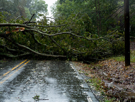 Hurricane Michael: Devastation on Oak Summit Rd