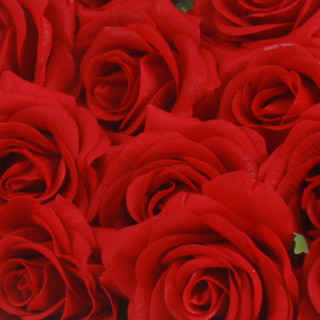 Real Touch Rose Red