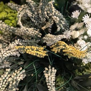Accent Flowers - Filler