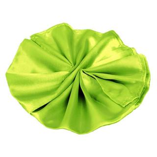 Satin Napkin Sage Green