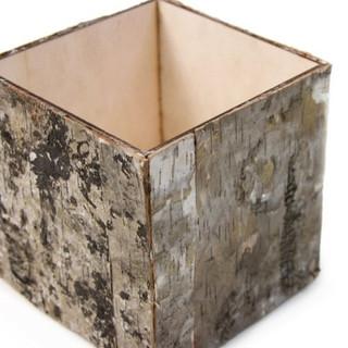 Natural Birch Bark Cube Vase