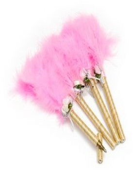Feather Pen Pink