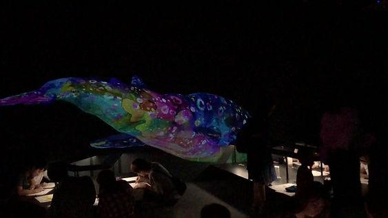inspiration movement whale tokyo orna - fine design